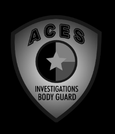 houston private investigator logo
